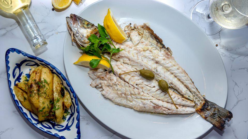 Anassa_Fish